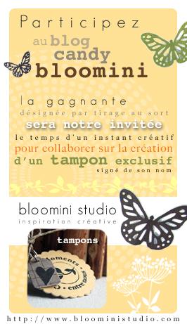 Blog candy juin 2010